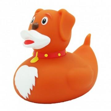 Badeend Hond - Dieren - 8,5 cm bij debadeend.nl
